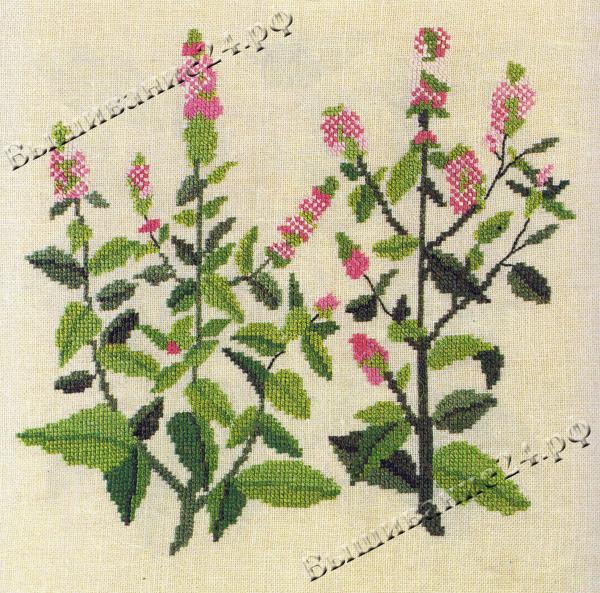 Схема вышивания крестом - Мята, цветы