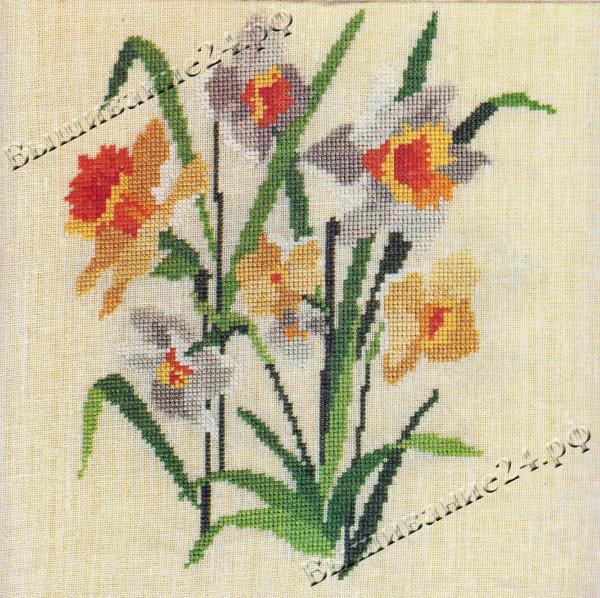 Схема вышивания крестом - Нарцисс цикламен, цветы