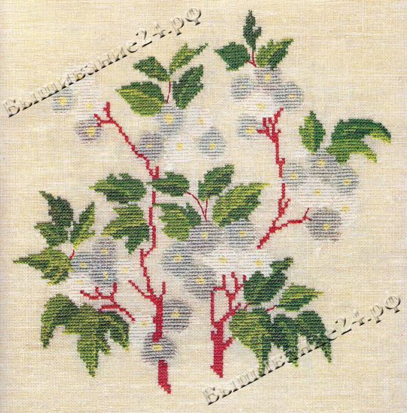 Схема вышивания крестом - Таволга, цветы