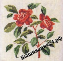 Схема вышивания крестом - Камелия, цветы