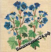 Схема вышивания крестом - Фаселия, цветы